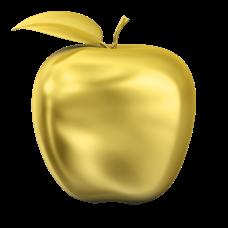 Golden Apple Award - Author/Illustrator Award
